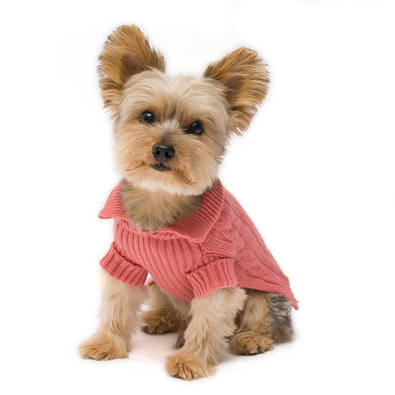 Cat And Dog Sweaters Women