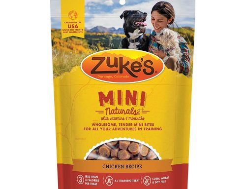 The Best Dog Treats